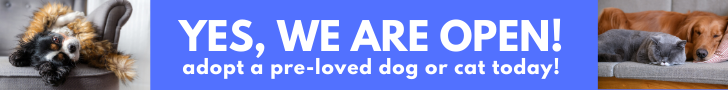 Yes, we are open. Adopt a dog or cat today.