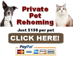 private pet rehoming services in California click here